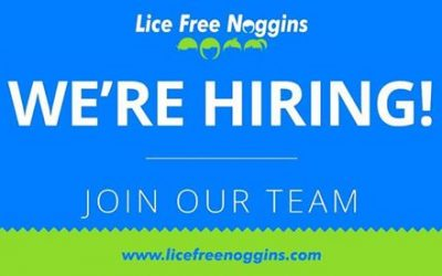 Head Lice Technician Job